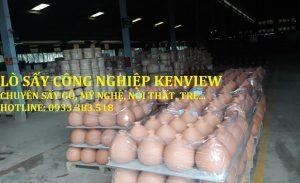 Kenview cung cấp lò sấy gỗ công nghiệp- sấy đồ mỹ nghệ tại Bình Dương.
