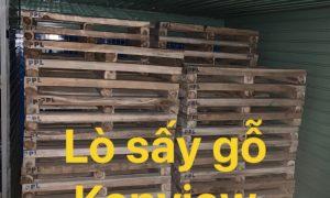 Lò sấy Kenview sấy pallet gỗ, lò sấy hun trùng gỗ tại Biên Hòa, Đồng Nai.
